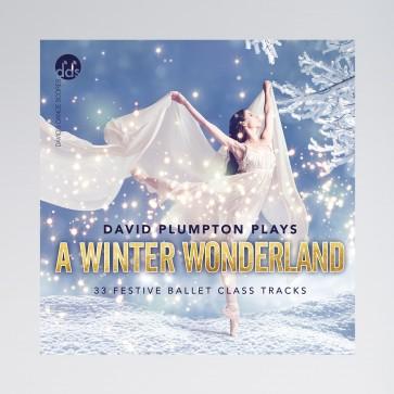 David Plumpton A Winter Wonderland