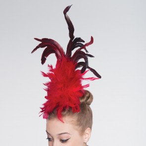 Haarschmuck mit Federn