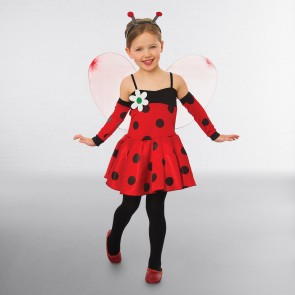Ladybird Dress With Wings