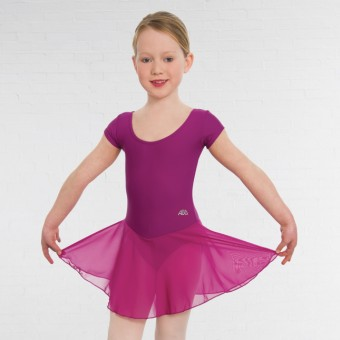 ABD Ballet Pre-Preparatory to Primary Voile Skirted Leotard