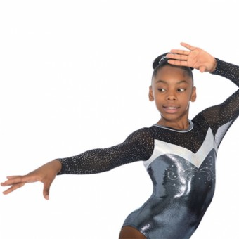 The Zone Ultra Round Neck Long Sleeve Leotard (Silver)