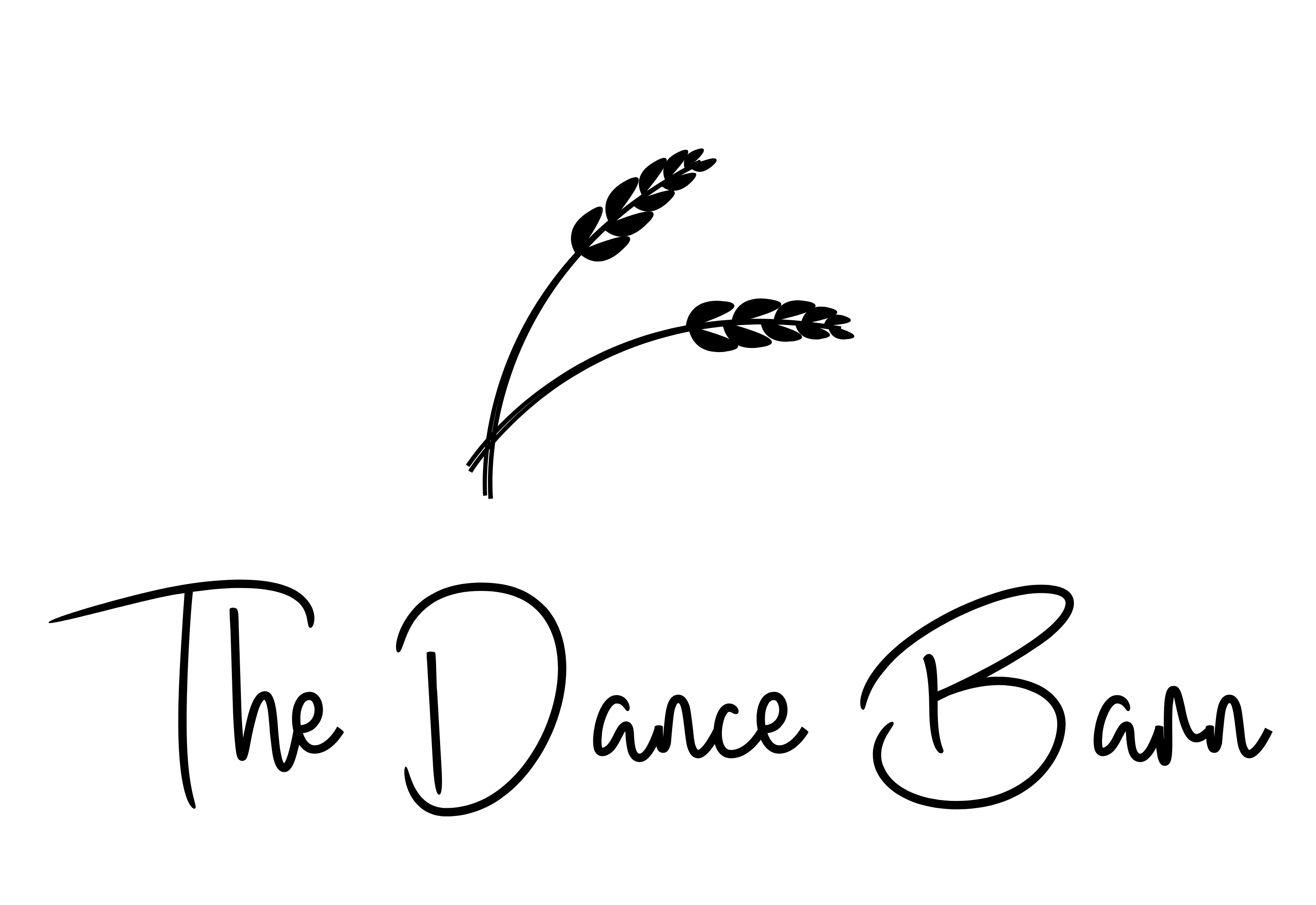 The Dance Barn
